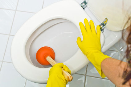 deboucher-wc-furet