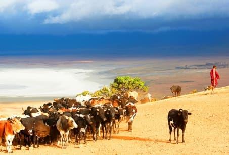 voyage a Namibie